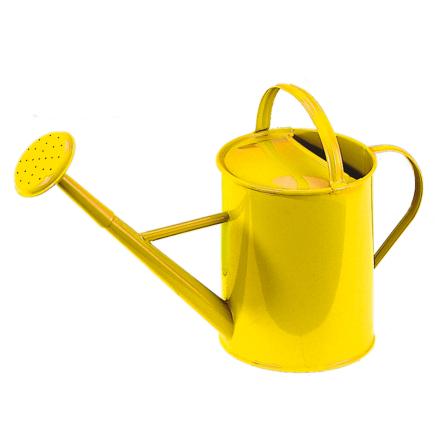 Glückskäfer vattenkanna, gul