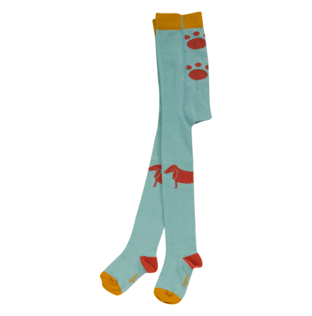 Pigeon duck egg blue dog tights