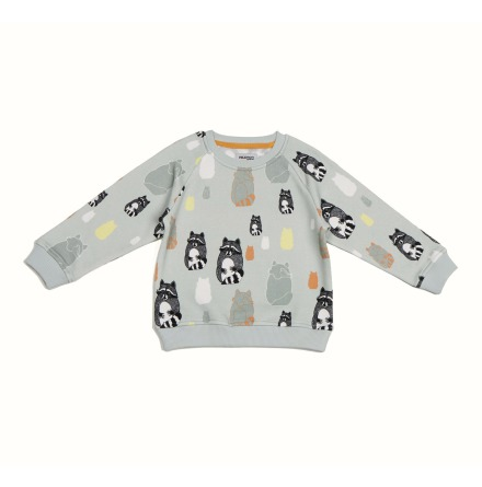 Filemon Kid Sweatshirt AOP Raccoons light grey